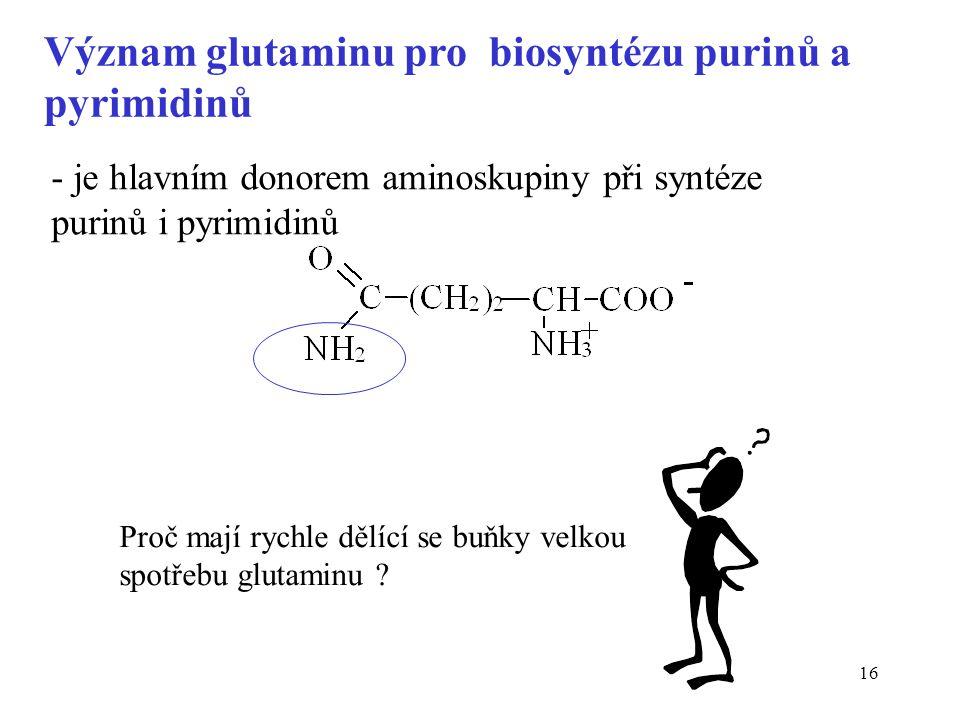 16 Význam glutaminu pro biosyntézu purinů a pyrimidinů - je hlavním donorem aminoskupiny při syntéze purinů i pyrimidinů Proč mají rychle dělící se bu