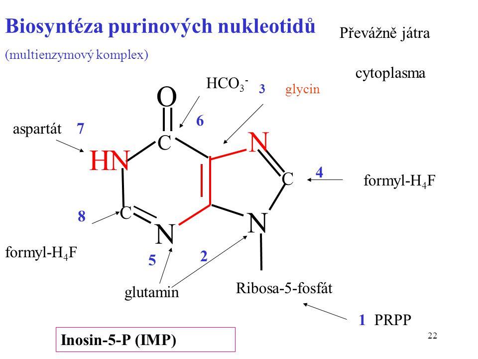 22 Ribosa-5-fosfát 3 glycin HCO 3 - aspartát formyl-H 4 F glutamin 1 PRPP formyl-H 4 F 2 4 6 7 8 Biosyntéza purinových nukleotidů (multienzymový kompl