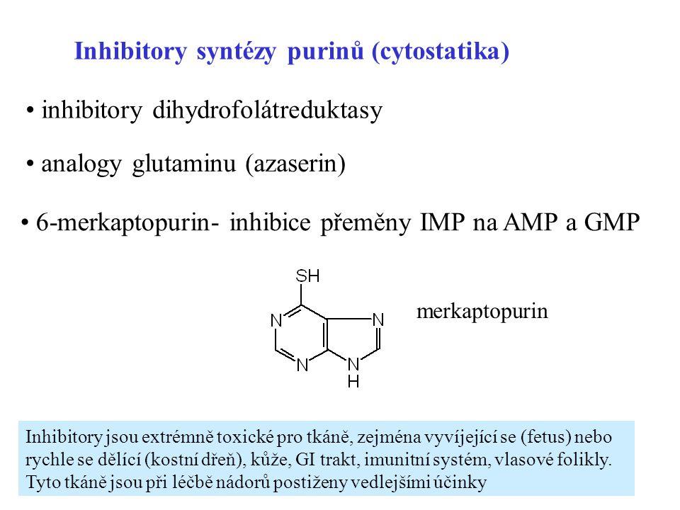 24 Inhibitory syntézy purinů (cytostatika) inhibitory dihydrofolátreduktasy analogy glutaminu (azaserin) 6-merkaptopurin- inhibice přeměny IMP na AMP