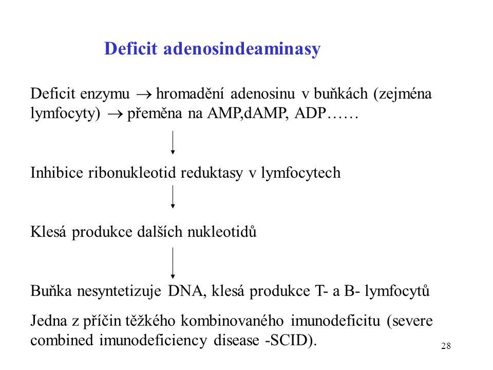 28 Deficit adenosindeaminasy Deficit enzymu  hromadění adenosinu v buňkách (zejména lymfocyty)  přeměna na AMP,dAMP, ADP…… Inhibice ribonukleotid re