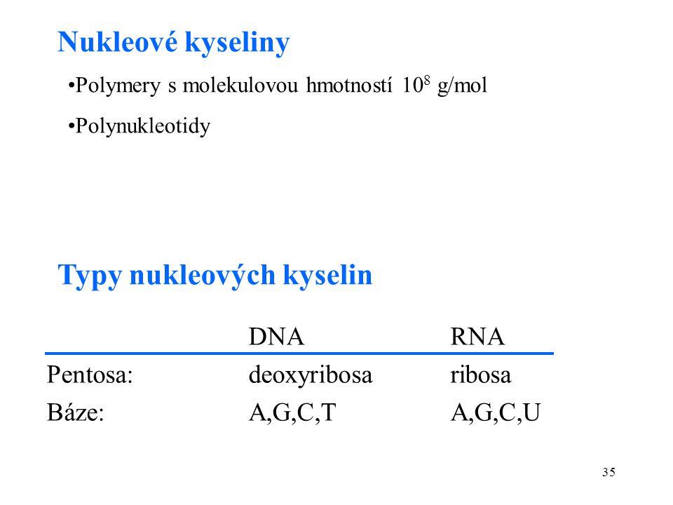 35 Nukleové kyseliny Polymery s molekulovou hmotností 10 8 g/mol Polynukleotidy Typy nukleových kyselin DNARNA Pentosa: deoxyribosaribosa Báze:A,G,C,T