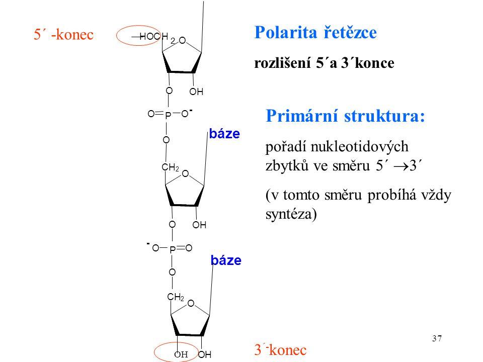 37 5´ -konec 3 ´- konec Polarita řetězce rozlišení 5´a 3´konce OH Primární struktura: pořadí nukleotidových zbytků ve směru 5´  3´ (v tomto směru pro
