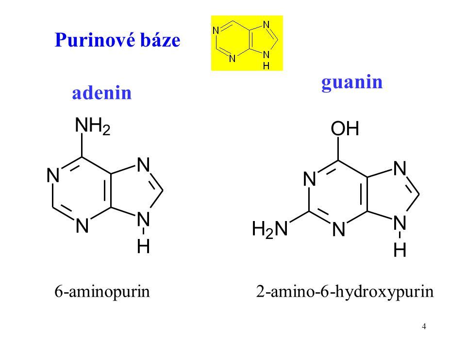 4 Purinové báze N N NH 2 N N H N N OH N N H H 2 N adenin guanin 6-aminopurin2-amino-6-hydroxypurin