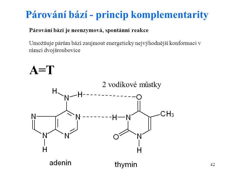 42 Párování bází - princip komplementarity A=T 2 vodíkové můstky Párování bází je neenzymová, spontánní reakce Umožňuje párům bází zaujmout energetick