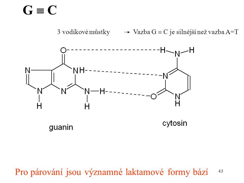 43 G  C Pro párování jsou významné laktamové formy bází 3 vodíkové můstky Vazba G  C je silnější než vazba A=T