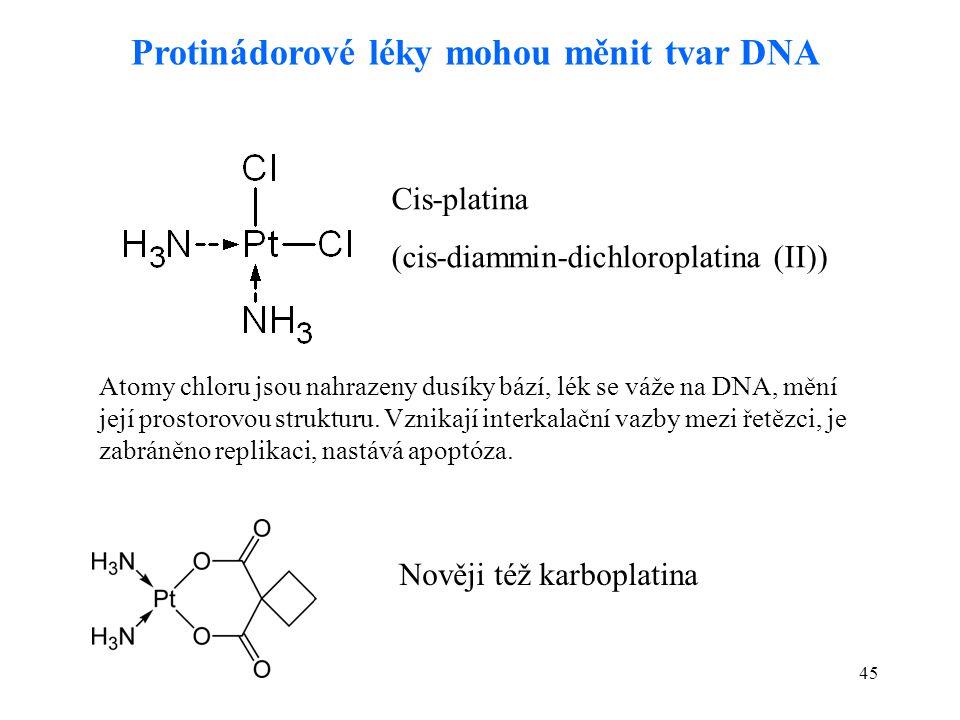45 Protinádorové léky mohou měnit tvar DNA Cis-platina (cis-diammin-dichloroplatina (II)) Atomy chloru jsou nahrazeny dusíky bází, lék se váže na DNA,