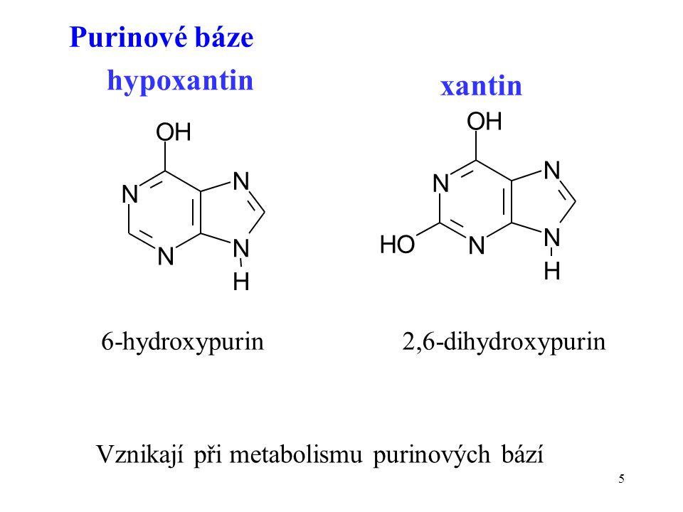 5 N N OH N N H HO N N OH N N H hypoxantin xantin Vznikají při metabolismu purinových bází 6-hydroxypurin2,6-dihydroxypurin Purinové báze
