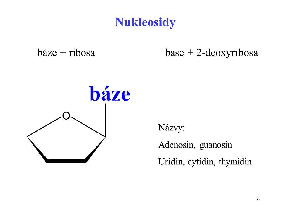 6 báze + ribosa base + 2-deoxyribosa Nukleosidy O báze pentosa Názvy: Adenosin, guanosin Uridin, cytidin, thymidin