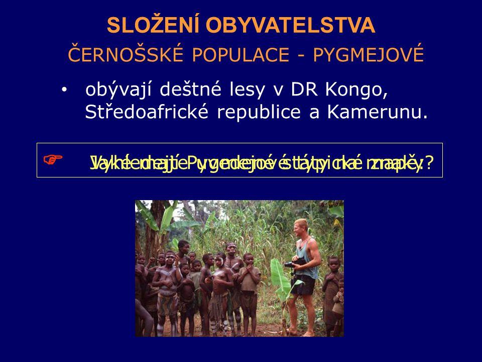 SLOŽENÍ OBYVATELSTVA ČERNOŠSKÉ POPULACE - PYGMEJOVÉ obývají deštné lesy v DR Kongo, Středoafrické republice a Kamerunu.