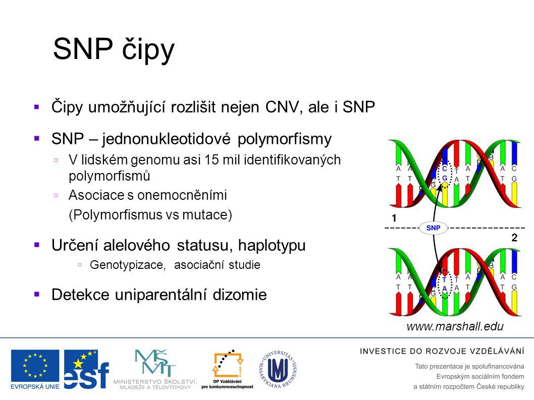 SNP čipy  Čipy umožňující rozlišit nejen CNV, ale i SNP  SNP – jednonukleotidové polymorfismy  V lidském genomu asi 15 mil identifikovaných polymor