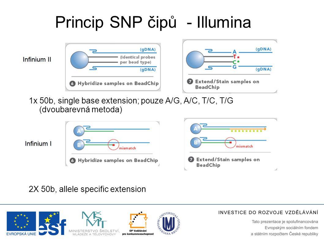 Princip SNP čipů - Illumina 2X 50b, allele specific extension 1x 50b, single base extension; pouze A/G, A/C, T/C, T/G (dvoubarevná metoda)