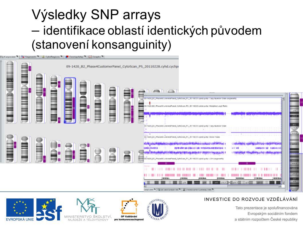 Výsledky SNP arrays – identifikace oblastí identických původem (stanovení konsanguinity)