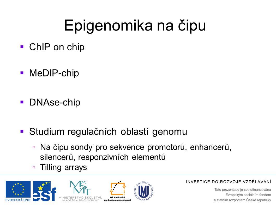 Epigenomika na čipu  ChIP on chip  MeDIP-chip  DNAse-chip  Studium regulačních oblastí genomu  Na čipu sondy pro sekvence promotorů, enhancerů, s
