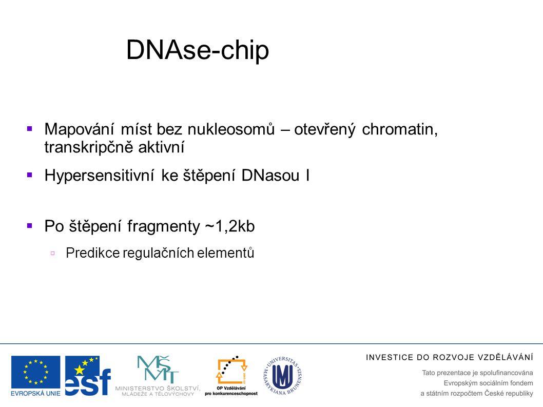 DNAse-chip  Mapování míst bez nukleosomů – otevřený chromatin, transkripčně aktivní  Hypersensitivní ke štěpení DNasou I  Po štěpení fragmenty ~1,2