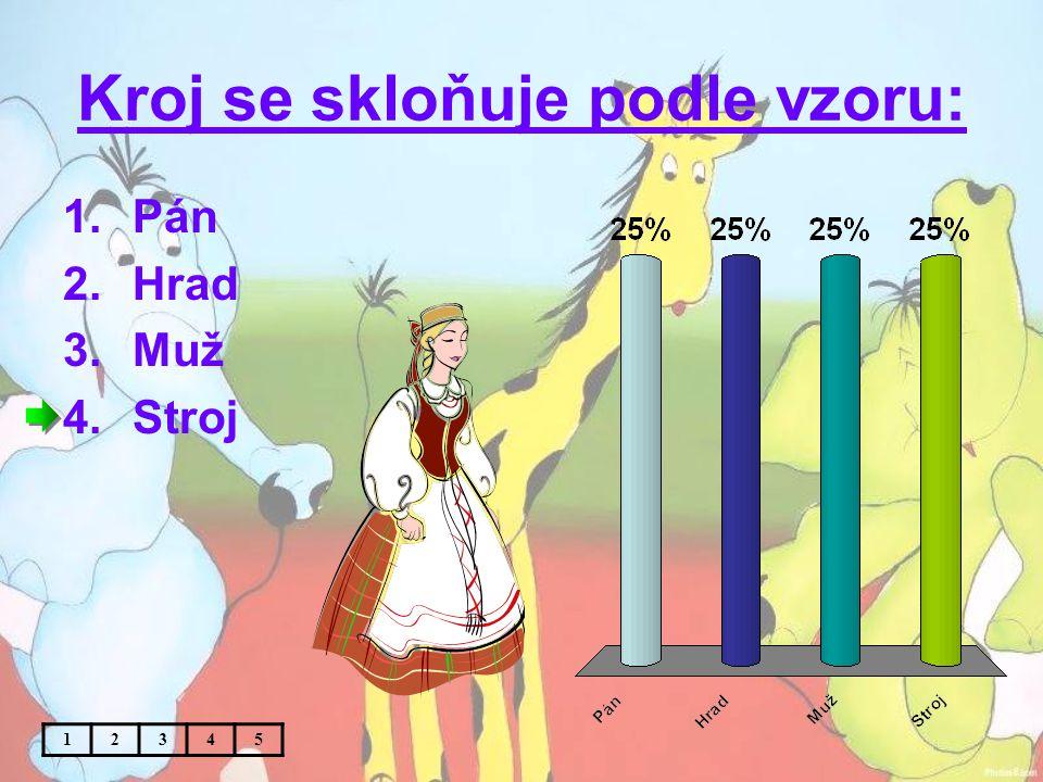 Téma:Vzory podstatných jmen (rod mužský, ženský a střední) – 4.
