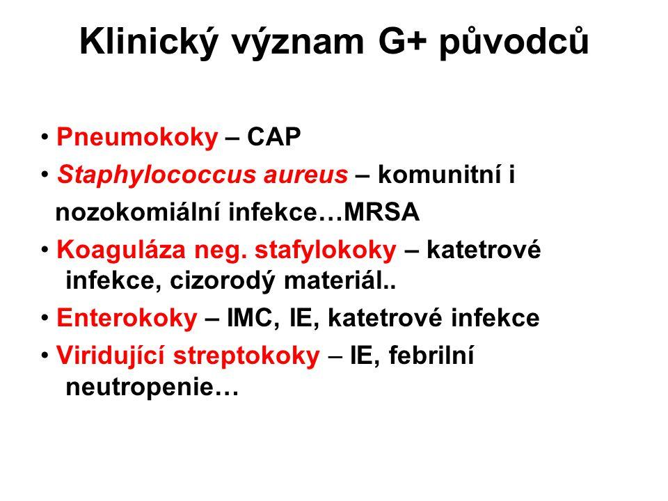 Klinický význam G+ původců Pneumokoky – CAP Staphylococcus aureus – komunitní i nozokomiální infekce…MRSA Koaguláza neg.
