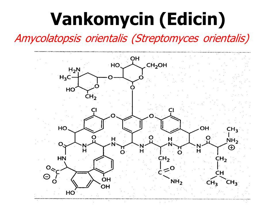 Vankomycin (Edicin) Amycolatopsis orientalis (Streptomyces orientalis)