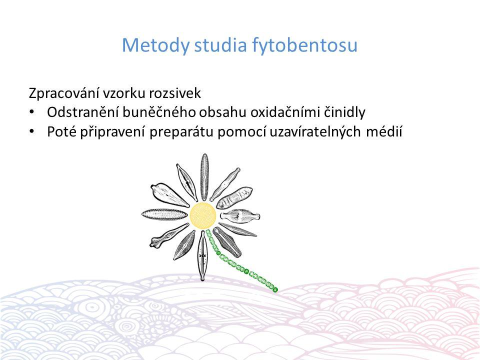 Metody studia fytobentosu Zpracování vzorku rozsivek Odstranění buněčného obsahu oxidačními činidly Poté připravení preparátu pomocí uzavíratelných mé