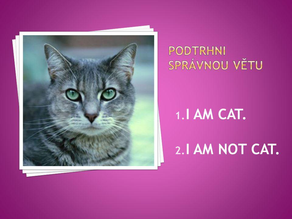 1. I AM CAT. 2. I AM NOT CAT.
