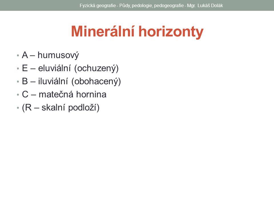 Minerální horizonty A – humusový E – eluviální (ochuzený) B – iluviální (obohacený) C – matečná hornina (R – skalní podloží) Fyzická geografie - Půdy,