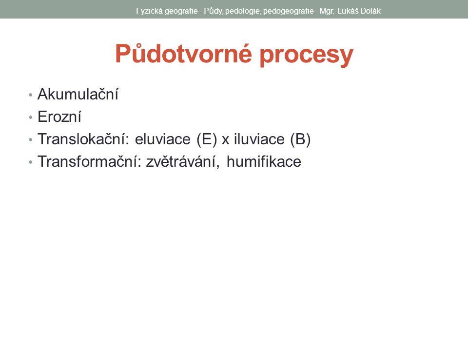 Půdotvorné procesy Akumulační Erozní Translokační: eluviace (E) x iluviace (B) Transformační: zvětrávání, humifikace Fyzická geografie - Půdy, pedolog