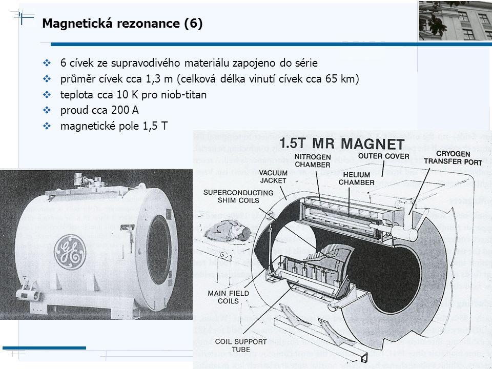 B i o c y b e r n e t i c s G r o u p Magnetická rezonance (6)  6 cívek ze supravodivého materiálu zapojeno do série  průměr cívek cca 1,3 m (celkov