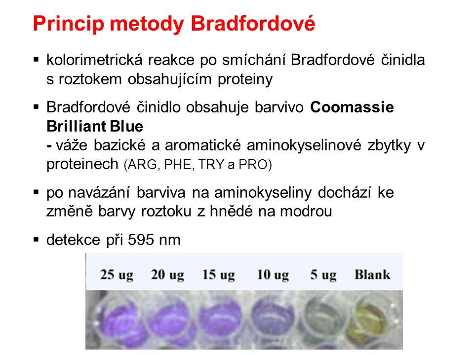 Princip metody Bradfordové  kolorimetrická reakce po smíchání Bradfordové činidla s roztokem obsahujícím proteiny  Bradfordové činidlo obsahuje barv