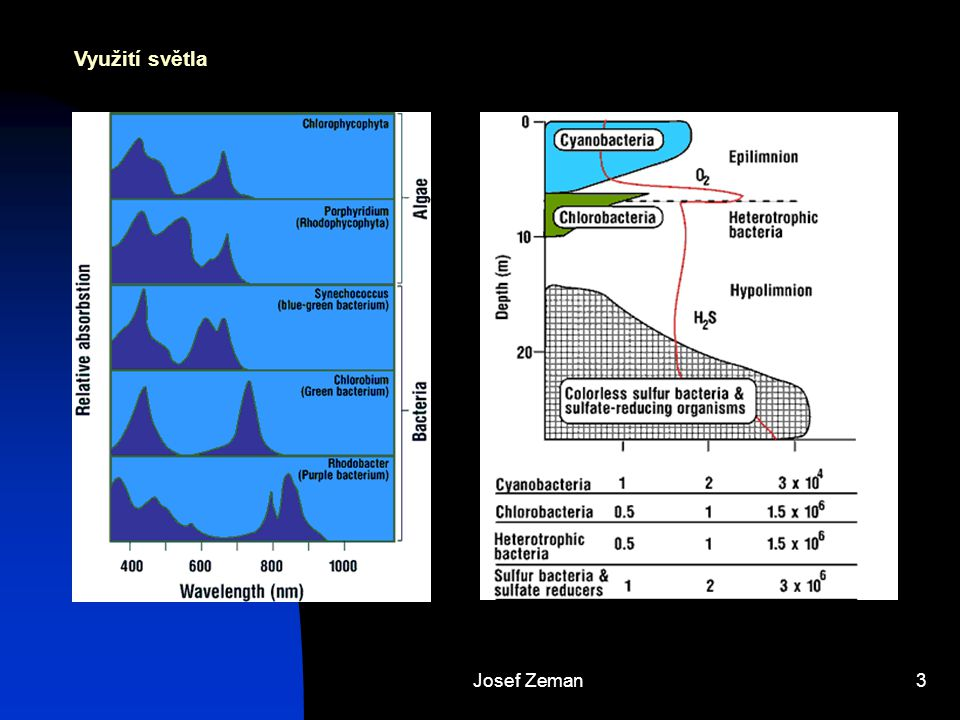 Josef Zeman14 Mikrobiální transformace anorganických látek Dusík NO 3 –  NO 2 –  NO  N 2 O  N 2  NH 3