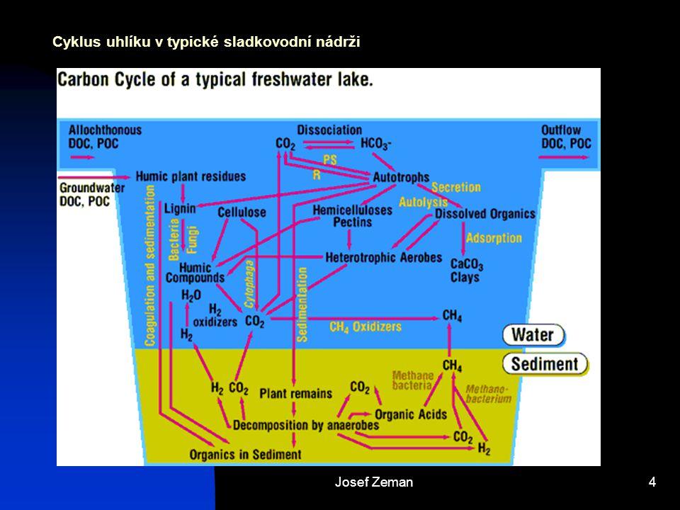 Josef Zeman4 Cyklus uhlíku v typické sladkovodní nádrži