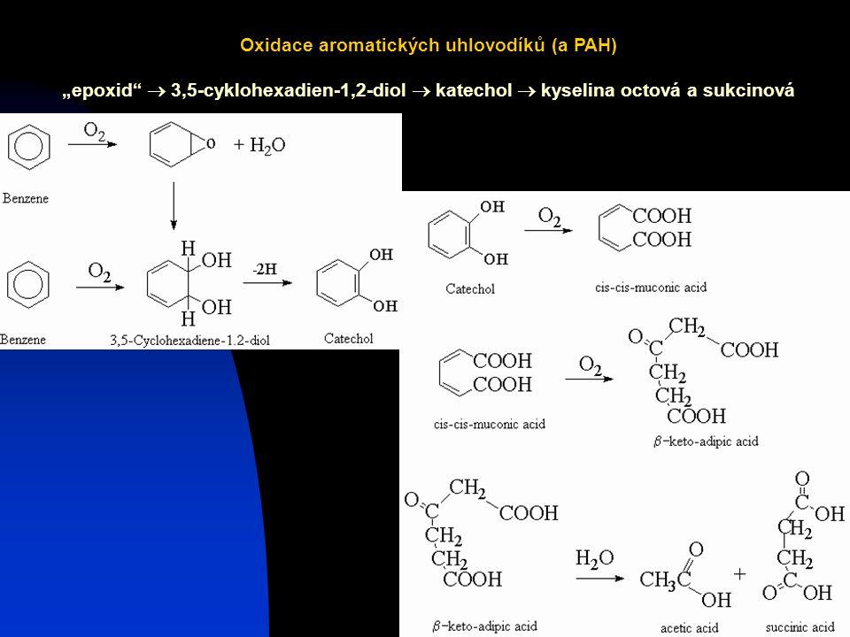 """Josef Zeman9 Oxidace aromatických uhlovodíků (a PAH) """"epoxid  3,5-cyklohexadien-1,2-diol  katechol  kyselina octová a sukcinová"""