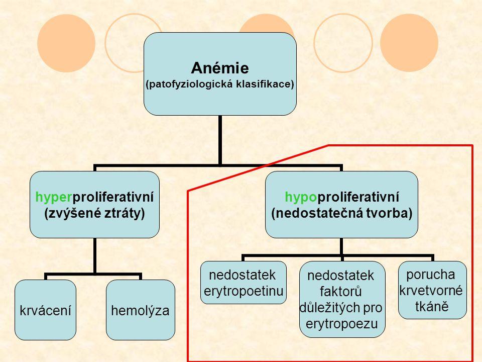 Anémie (patofyziologická klasifikace) hyperproliferativní (zvýšené ztráty) krváceníhemolýza hypoproliferativní (nedostatečná tvorba) nedostatek erytro