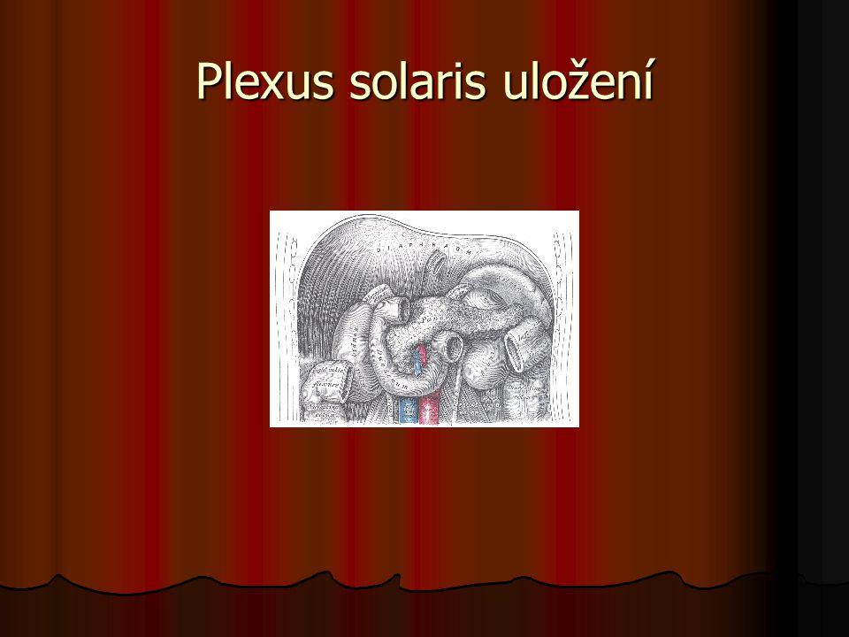 Plexus solaris uložení