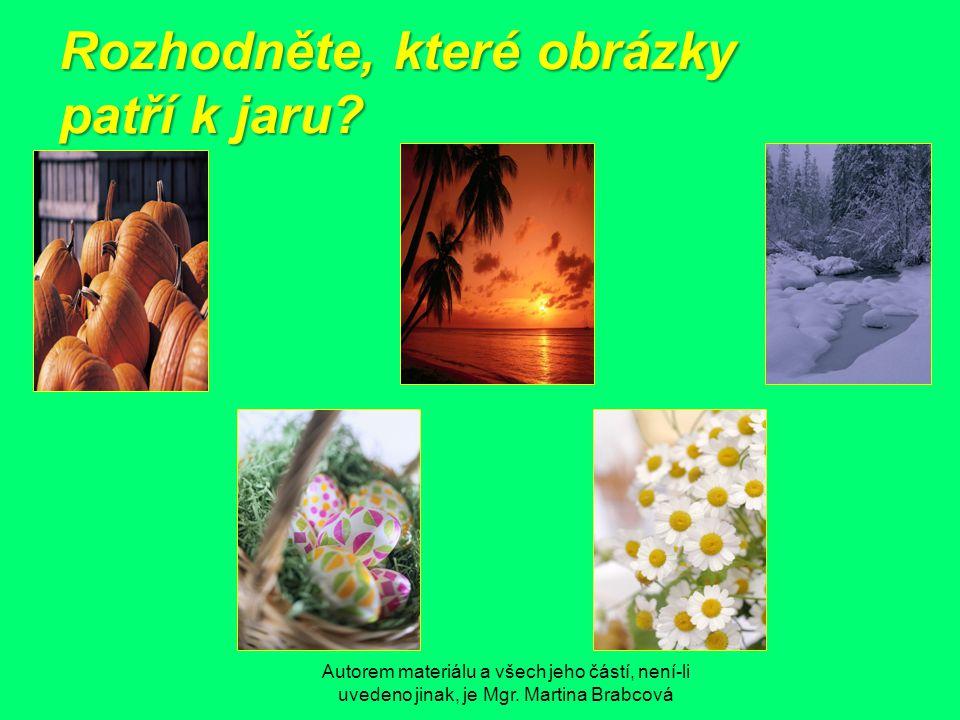 Rozhodněte, které obrázky patří k jaru?