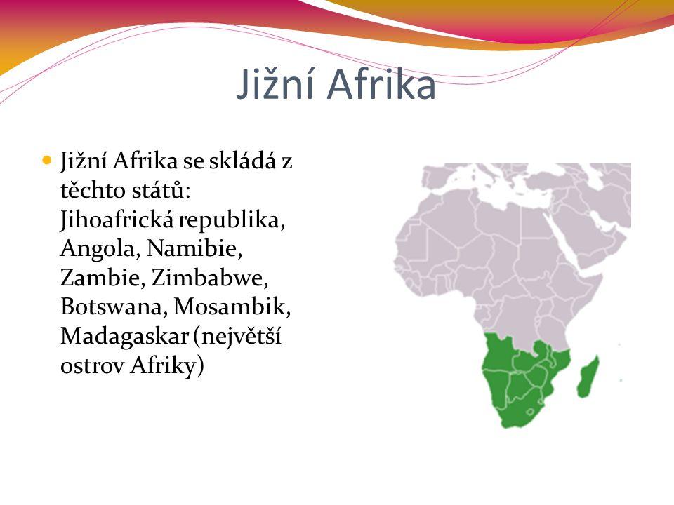 Jižní Afrika Jižní Afrika se skládá z těchto států: Jihoafrická republika, Angola, Namibie, Zambie, Zimbabwe, Botswana, Mosambik, Madagaskar (největší