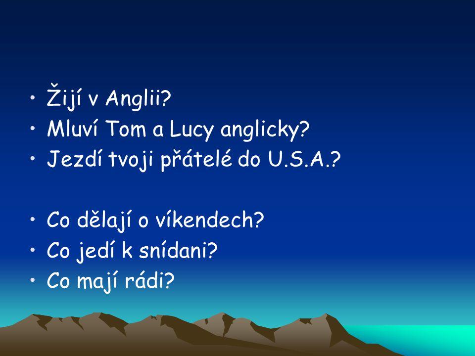 Žijí v Anglii. Mluví Tom a Lucy anglicky. Jezdí tvoji přátelé do U.S.A..