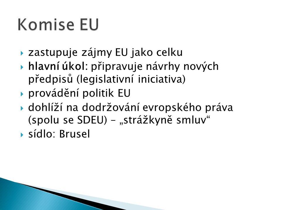  zastupuje zájmy EU jako celku  hlavní úkol: připravuje návrhy nových předpisů (legislativní iniciativa)  provádění politik EU  dohlíží na dodržov