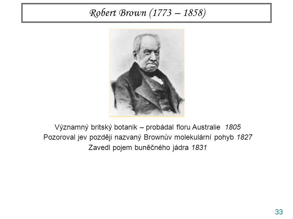 33 Robert Brown (1773 – 1858) Významný britský botanik – probádal floru Australie 1805 Pozoroval jev později nazvaný Brownův molekulární pohyb 1827 Zavedl pojem buněčného jádra 1831 Oblíbené bludy Brown byl objevitel (Jan Ingenhousz 1765) Brown pozoroval pohyby pylových zrn (pohybovaly se částice uvnitř vakuol) Brown svým mikroskopem nemohl nic vidět (pokusy byly opakovány)