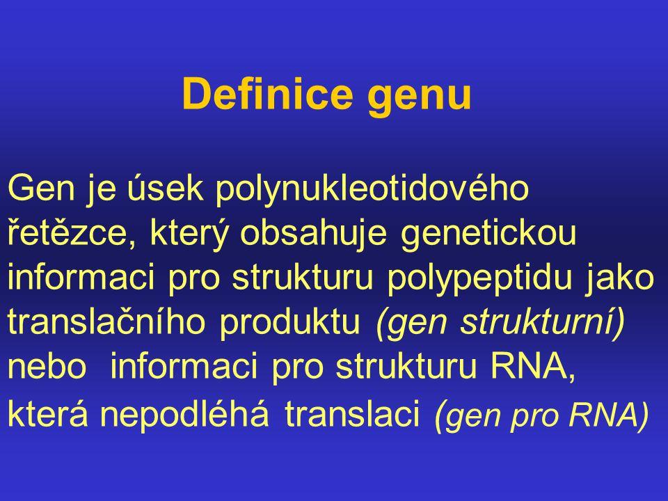 Definice genu Gen je úsek polynukleotidového řetězce, který obsahuje genetickou informaci pro strukturu polypeptidu jako translačního produktu (gen st