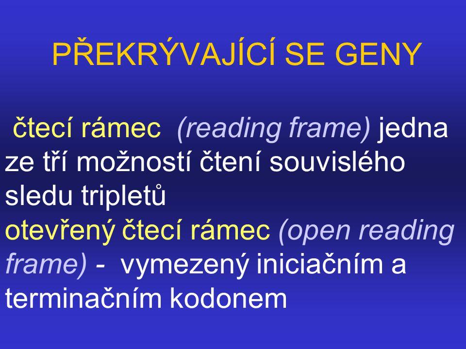 PŘEKRÝVAJÍCÍ SE GENY čtecí rámec (reading frame) jedna ze tří možností čtení souvislého sledu tripletů otevřený čtecí rámec (open reading frame) - vym