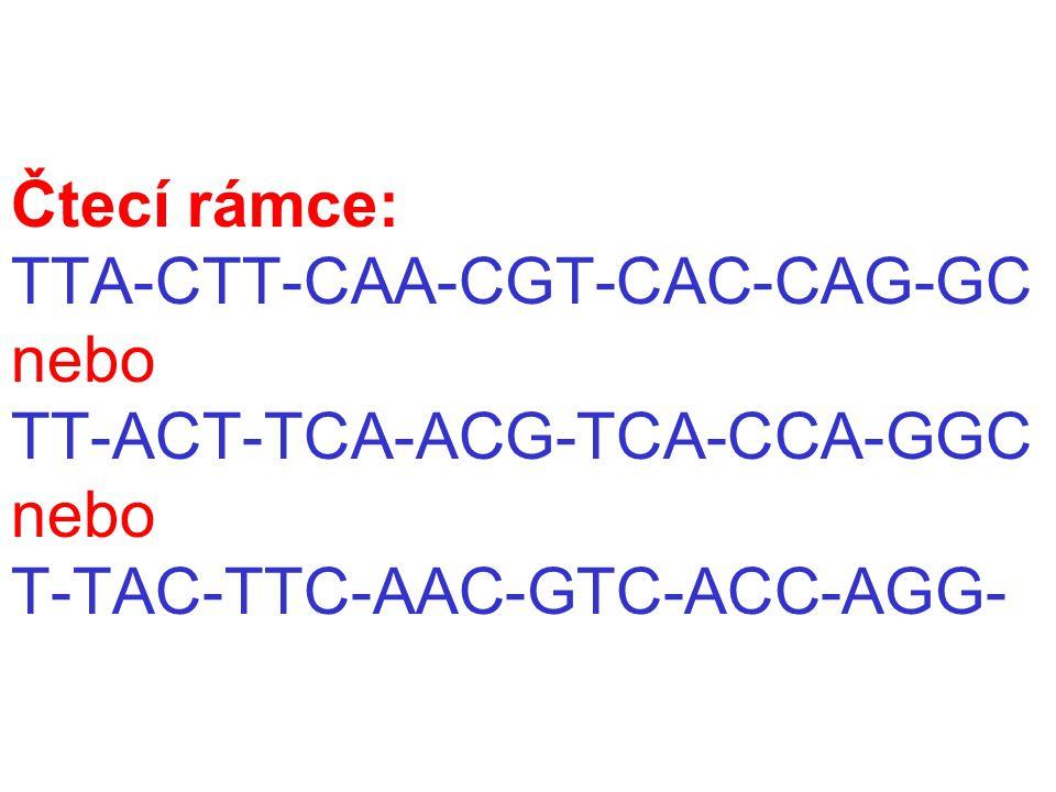 Čtecí rámce: TTA-CTT-CAA-CGT-CAC-CAG-GC nebo TT-ACT-TCA-ACG-TCA-CCA-GGC nebo T-TAC-TTC-AAC-GTC-ACC-AGG-