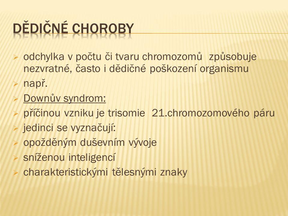  odchylka v počtu či tvaru chromozomů způsobuje nezvratné, často i dědičné poškození organismu  např.