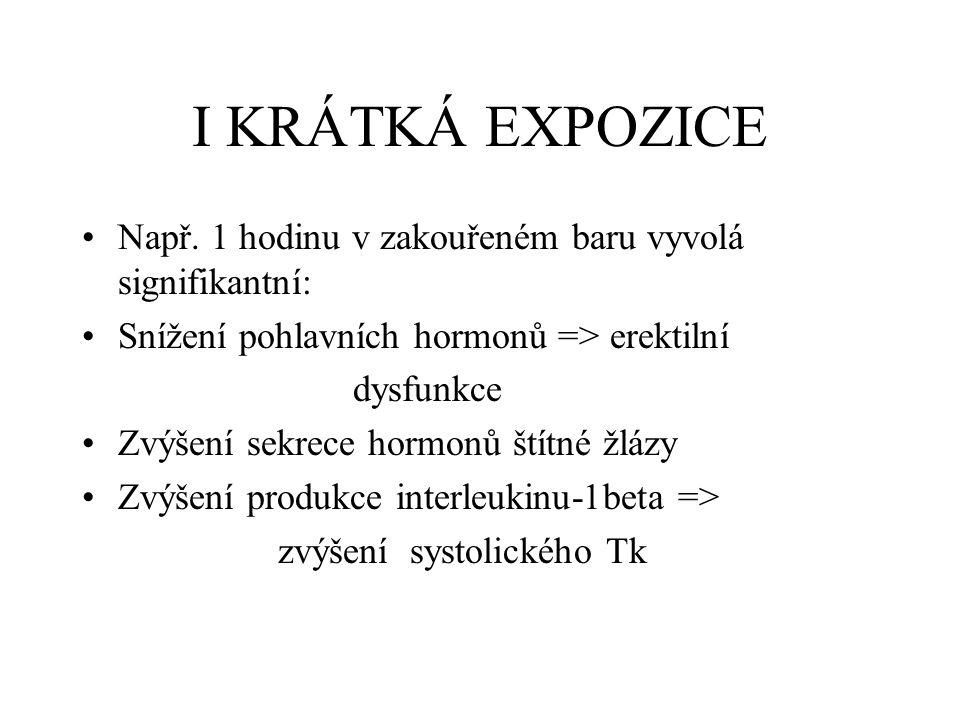 I KRÁTKÁ EXPOZICE Např.