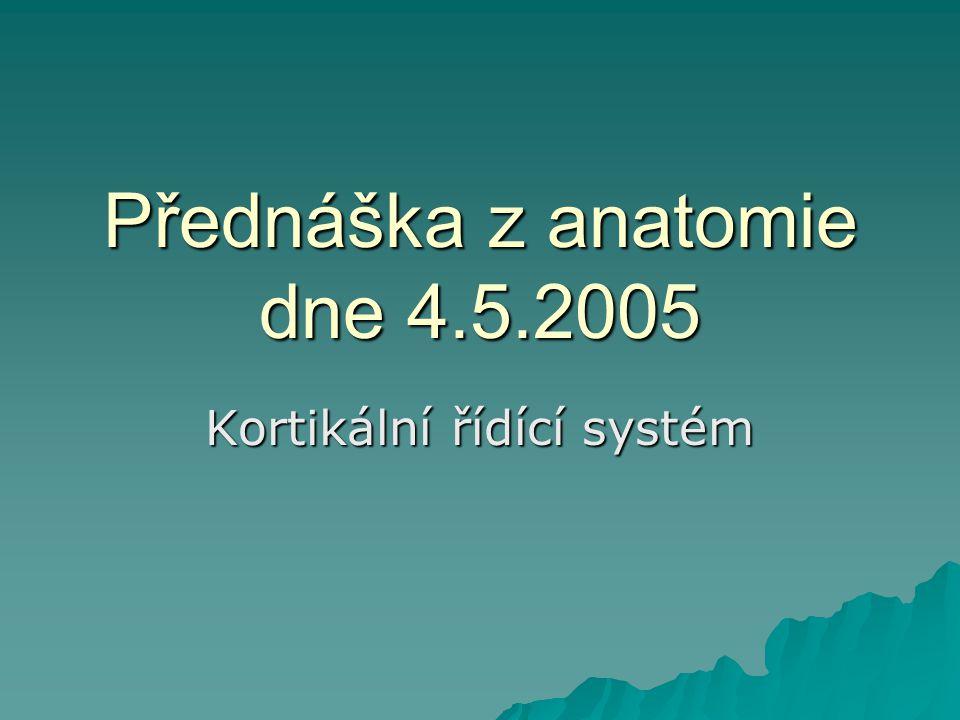 Přednáška z anatomie dne 4.5.2005 Kortikální řídící systém