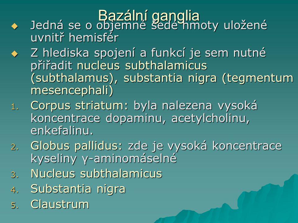 Bazální ganglia  Jedná se o objemné šedé hmoty uložené uvnitř hemisfér  Z hlediska spojení a funkcí je sem nutné přiřadit nucleus subthalamicus (sub