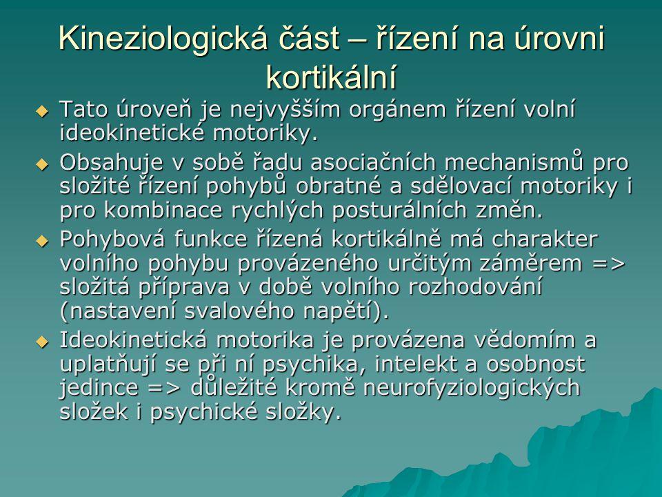 Kineziologická část – řízení na úrovni kortikální  Tato úroveň je nejvyšším orgánem řízení volní ideokinetické motoriky.  Obsahuje v sobě řadu asoci