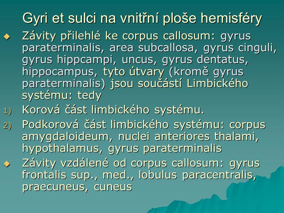Gyri et sulci na vnitřní ploše hemisféry  Závity přilehlé ke corpus callosum: gyrus paraterminalis, area subcallosa, gyrus cinguli, gyrus hippcampi,