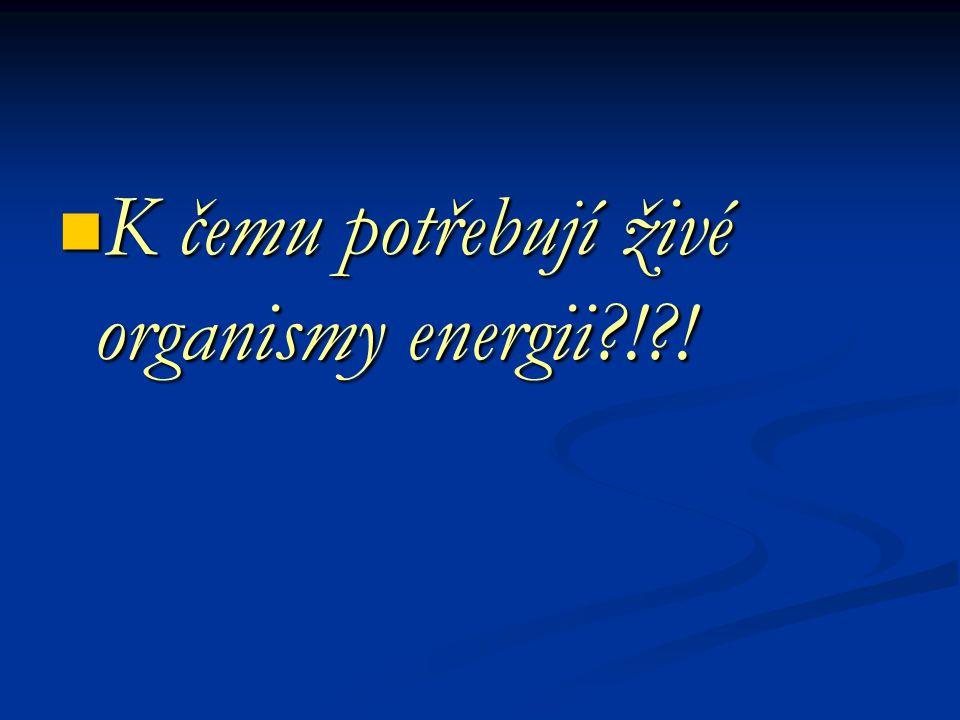 K čemu potřebují živé organismy energii?!?! K čemu potřebují živé organismy energii?!?!