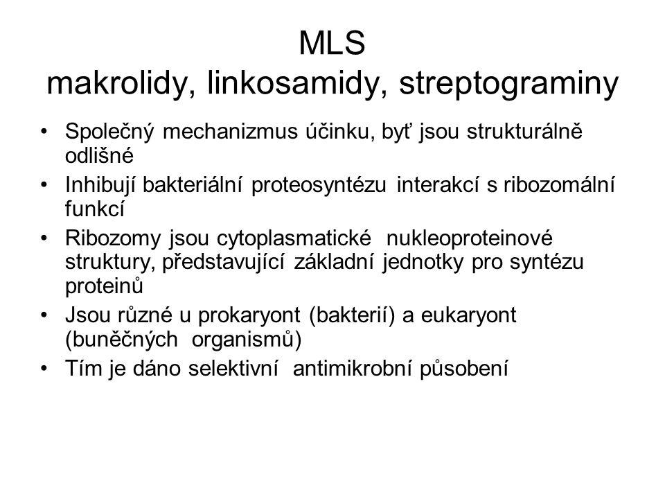 MLS makrolidy, linkosamidy, streptograminy Společný mechanizmus účinku, byť jsou strukturálně odlišné Inhibují bakteriální proteosyntézu interakcí s ribozomální funkcí Ribozomy jsou cytoplasmatické nukleoproteinové struktury, představující základní jednotky pro syntézu proteinů Jsou různé u prokaryont (bakterií) a eukaryont (buněčných organismů) Tím je dáno selektivní antimikrobní působení