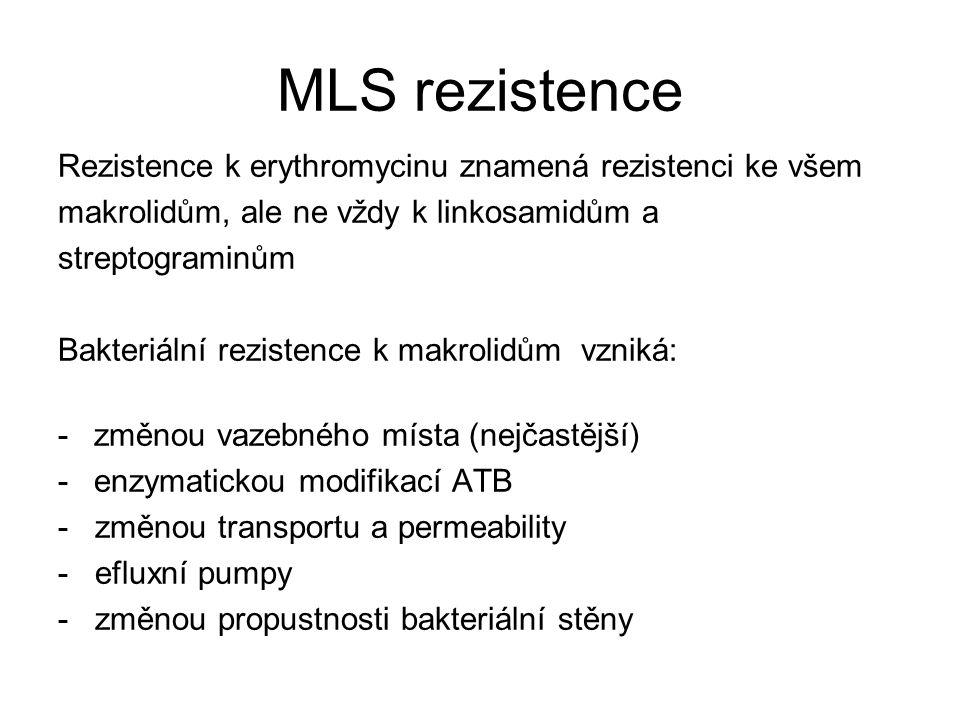 MLS rezistence Rezistence k erythromycinu znamená rezistenci ke všem makrolidům, ale ne vždy k linkosamidům a streptograminům Bakteriální rezistence k makrolidům vzniká: -změnou vazebného místa (nejčastější) -enzymatickou modifikací ATB - změnou transportu a permeability - efluxní pumpy - změnou propustnosti bakteriální stěny