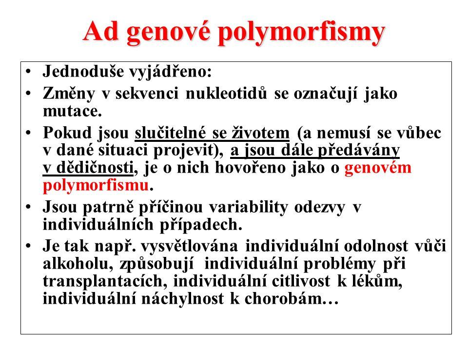 Ad genové polymorfismy Jednoduše vyjádřeno: Změny v sekvenci nukleotidů se označují jako mutace.